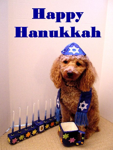 hanukkah scraps hanukkah graphics hanukkah images hanukkah pics hanukkah photos hanukkah greetings hanukkah ecards hanukkah wishes hanukkah animations